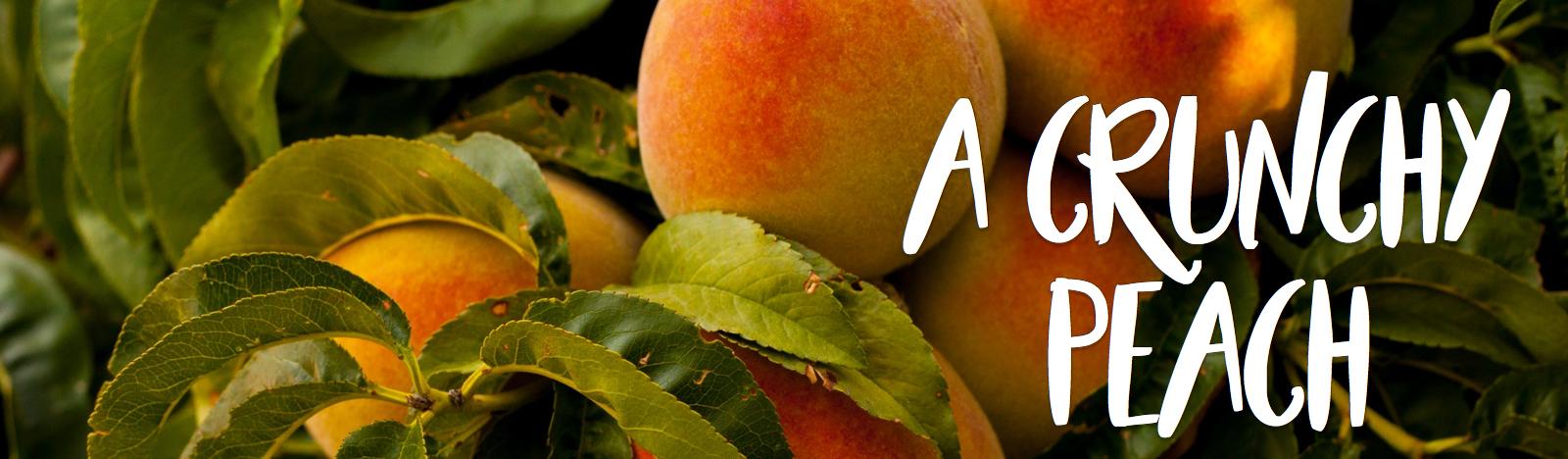 A Crunchy Peach